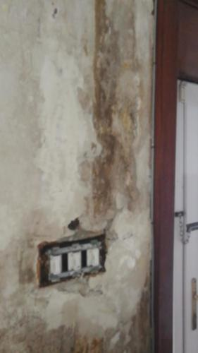 water damaged plaster